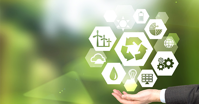 5 Steps To Manage Your Environmental Impact And Boost Growth