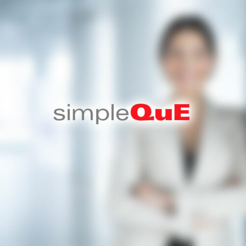 simpleQuE Consulting Team Member